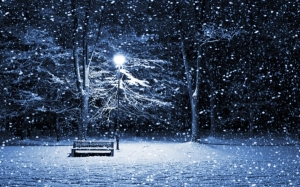 winter snow night bench lamp posts 2560x1600 wallpaper_www.wallpaperhi.com_63