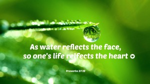 Water-Drop-Reflection